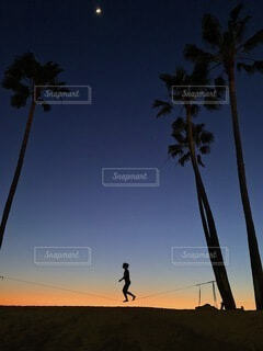 Sunsetを歩く君の写真・画像素材[4768268]
