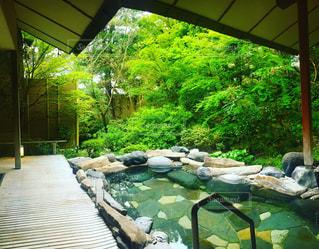 菊乃屋の温泉 - No.796649