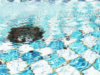 涼しい水面の写真・画像素材[4770715]