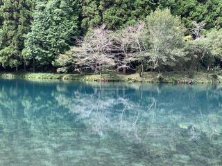 水面の写真・画像素材[4770307]
