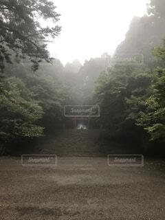 雨の霧島の写真・画像素材[4770399]