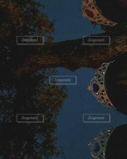 夜の写真・画像素材[4770346]