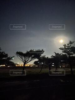 夜空に輝く黄金の光の写真・画像素材[4770913]