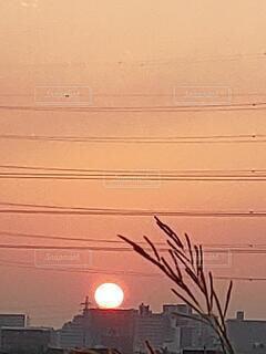 空,屋外,太陽,朝日,朝焼け,朝陽,サンライズ