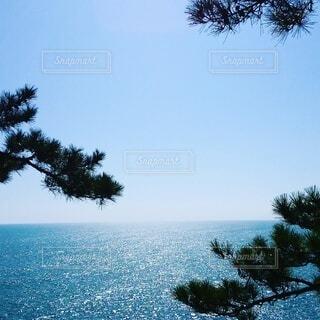 南国土佐の桂浜 高知県の写真・画像素材[4781344]