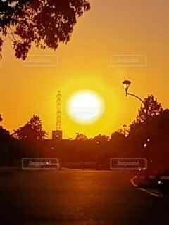 空,夕日,屋外,太陽,夕暮れ,樹木,夕陽,夕景,明るい,サンセット,街路灯,設定