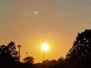 自然,空,夕日,屋外,太陽,夕焼け,夕暮れ,樹木,夕陽,夕景,サンセット,夕刻