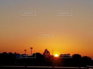 自然,空,夕日,屋外,太陽,雲,夕焼け,夕暮れ,樹木,夕陽,夕景,サンセット,夕刻
