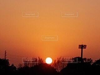 自然,風景,空,夕日,屋外,太陽,夕焼け,夕暮れ,樹木,夕陽,夕景,明るい,サンセット,夕刻
