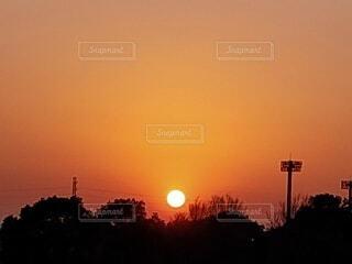 自然,風景,空,夕日,屋外,太陽,雲,夕焼け,夕暮れ,樹木,夕陽,夕景,サンセット,夕刻