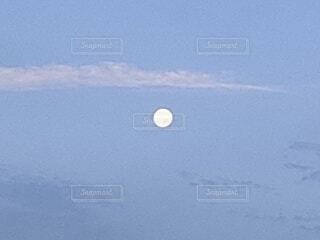 自然,空,屋外,夜明け,月,朝,満月,朝の月