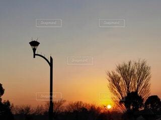 風景,空,夕日,屋外,太陽,夕焼け,夕暮れ,シルエット,樹木,夕陽,日の出,夕景,サンセット,通り,夕暮れ時,夕刻,日没前,街路灯