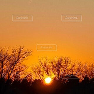 ノスタルジックな夕刻の写真・画像素材[4815742]