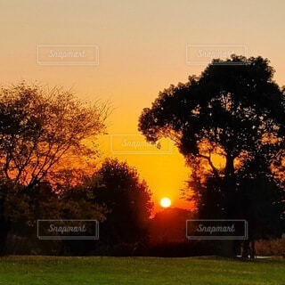 素敵な夕刻の写真・画像素材[4815739]
