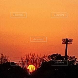 日の入りの写真・画像素材[4819661]