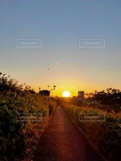 綺麗な夕陽の写真・画像素材[4826743]