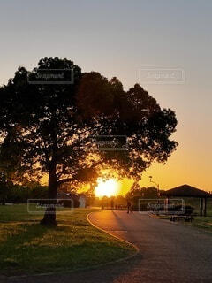 美しい夕景の写真・画像素材[4827027]
