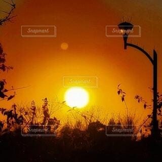 綺麗な夕陽の玉の写真・画像素材[4829596]