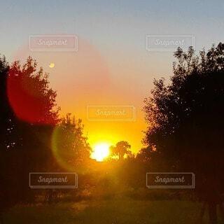 夕陽の頃の写真・画像素材[4830995]