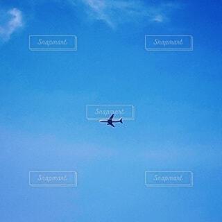 水色の空、1機の飛行機の写真・画像素材[4850752]