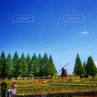 青空と風車の写真・画像素材[4850758]