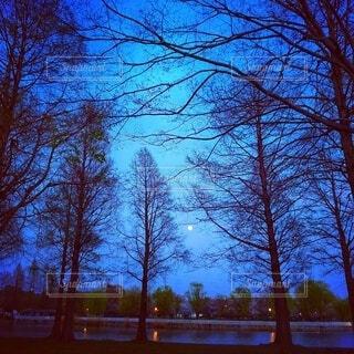 美しい夕暮れ時の空と満月の写真・画像素材[4851512]