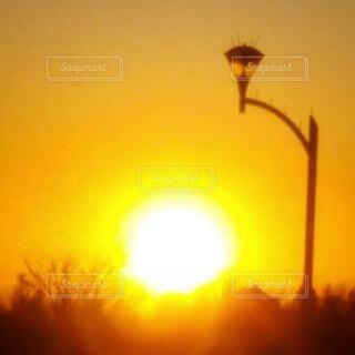 まばゆい夕陽の写真・画像素材[4871816]