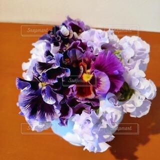 お庭のお花達の写真・画像素材[4939258]