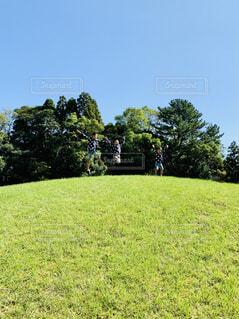 子ども,空,公園,屋外,緑,ジャンプ,景色,草,樹木,日中,ガーデン