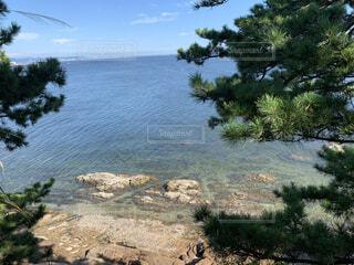 自然,風景,海,空,夏,木,屋外,晴れ,青空,島,青,水,波,水面,岩,夏休み,草木,竹島