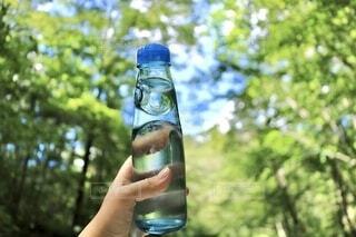 自然,夏,屋外,緑,綺麗,青,透明,ガラス,樹木,涼しい,ボトル,ドリンク,涼,ラムネ,飲料,飲む