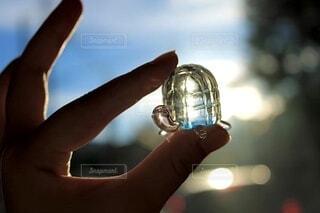 綺麗,青,透明,手,ガラス,光,涼しい,亀,丸ボケ