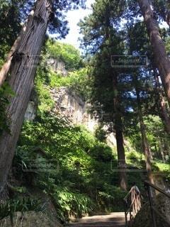 風景,空,屋外,雲,道路,田舎,山,観光,家,樹木,道,崖,旅行,木目,山寺,神秘,山形,草木,がけ