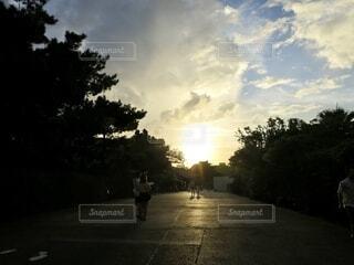 風景,空,屋外,太陽,雲,夕焼け,樹木,道