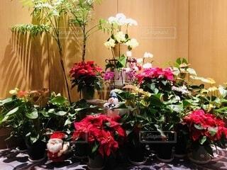 花,冬,屋内,花束,花瓶,バラ,薔薇,植木鉢,壁,クリスマス,観葉植物,フラワーアレンジ,花柄,草木,花屋,ガーデン