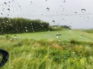 自然,雨,水面,田舎,道,田,畑,ドライブ,ドロップ,霧雨,液滴