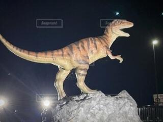 夜,動物,暗い,ライトアップ,明るい,ドラゴン,福井,トカゲ,爬虫類,ティラノサウルス,恐竜,白亜紀,絶滅の危機