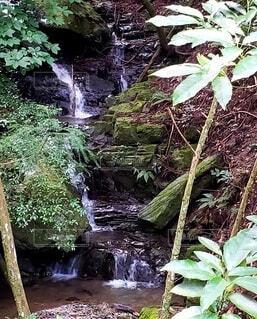自然,風景,屋外,葉っぱ,水面,山,滝,樹木,岩,草木