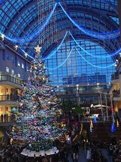 建物,イルミネーション,都会,明るい,クリスマス ツリー