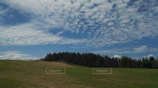 自然,空,屋外,草原,雲,牧草地,山,景色,草,樹木
