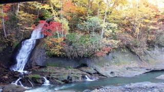 自然,秋,紅葉,屋外,川,水面,滝,樹木,草木