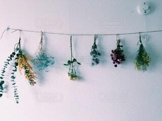 インテリア,花,カラフル,部屋,ドライフラワー,壁,たくさん,ナチュラル,ガーランド,飾り