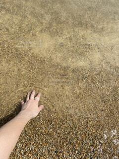 屋外,砂,ビーチ,人物,人,キラキラ,淡色