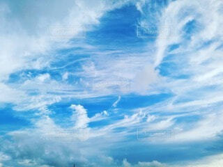 空の写真・画像素材[4814459]