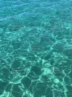 自然,海,屋外,晴れ,水面,葉,泳ぐ,水中,キラキラ,波紋,アクア,トルコ石,ティール