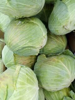 食べ物,葉,野菜,キャベツ,スーパーフード,食材,スカッシュ,有機栽培,自然食品,フローラ,セイヨウカボチャ,地元の料理,ビーガン栄養