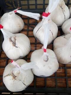 秋,ニンニク,丹波篠山,免疫力野菜,ジャンボニンニク