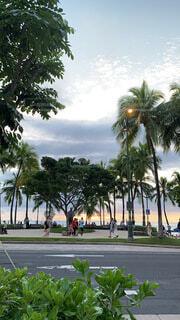 海,空,夏,屋外,ビーチ,雲,夕暮れ,景色,樹木,旅行,ヤシの木,ハワイ,夏休み,リゾート,草木