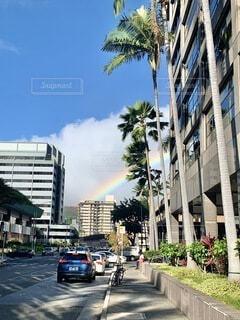 空,建物,夏,屋外,雲,虹,車,道路,レインボー,景色,道,旅行,高層ビル,ヤシの木,ハワイ,夏休み,リゾート,通り,ダウンタウン,アーキテクチャ
