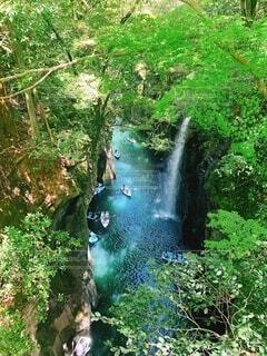 自然,夏,森林,木,屋外,太陽,ボート,川,水面,滝,樹木,草木,高千穂峡